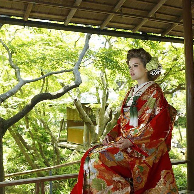 川島織物の色打掛